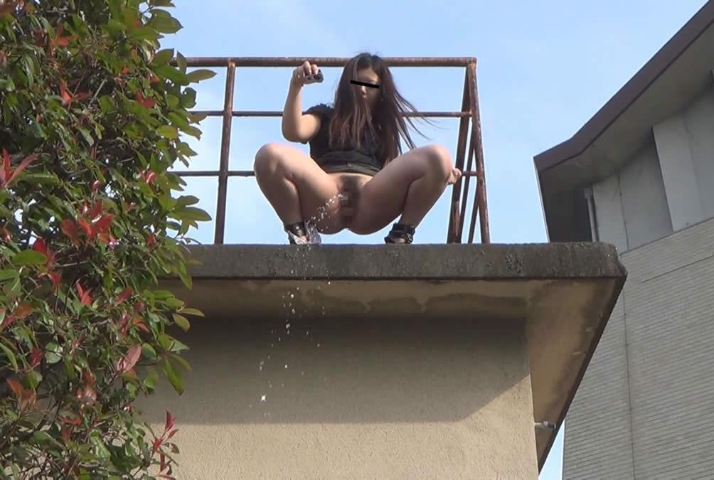 【マジキチ】高低差5m以上の高所から放尿してるまんさんのマジキチ画像よ、集まれwwwwwwwwwwww(画像あり)・14枚目