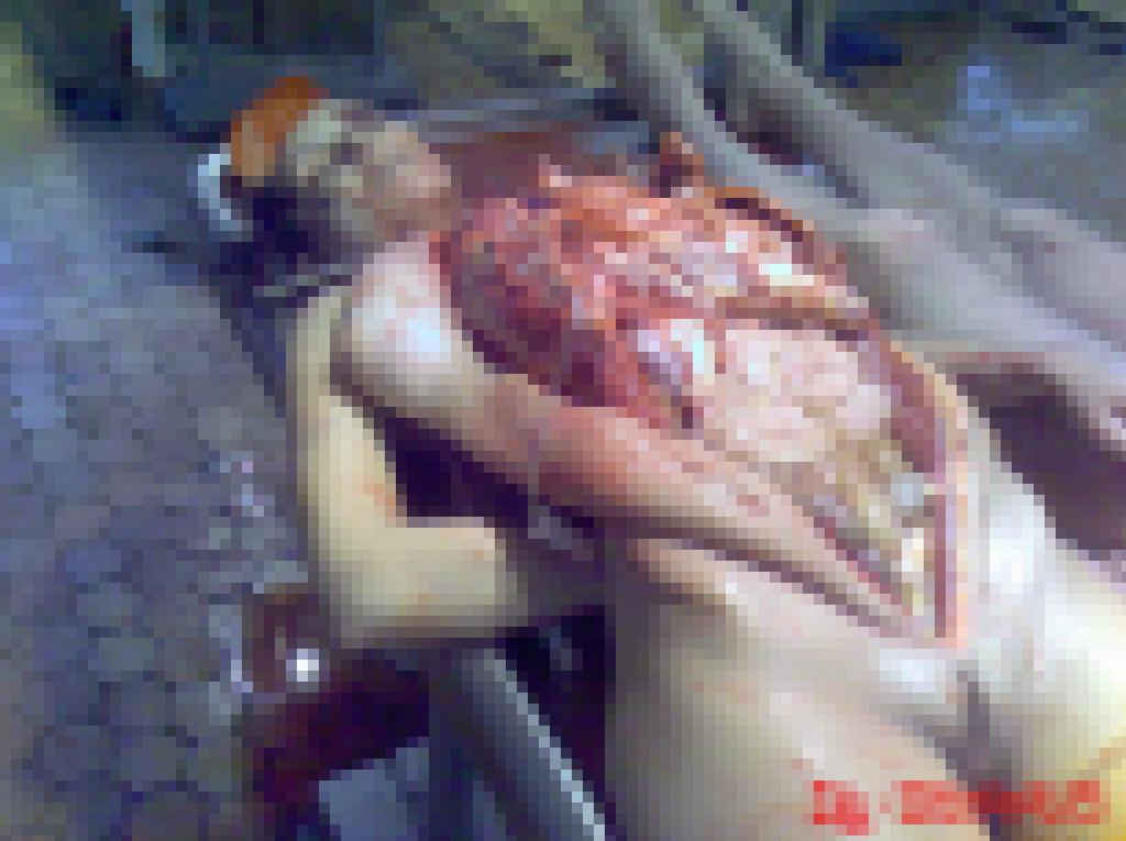 【閲覧注意】女の身体を切り裂き興奮する異常者が残したモノがこちら・・・(画像あり)・20枚目