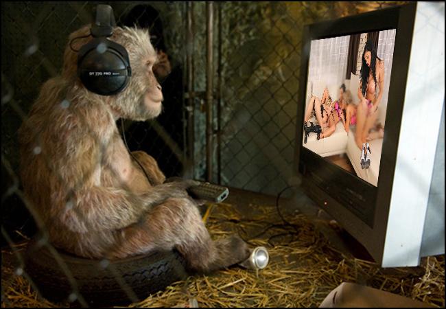 【画像あり】猿とSEX試みる女闇深すぎてワロタ。。。・20枚目
