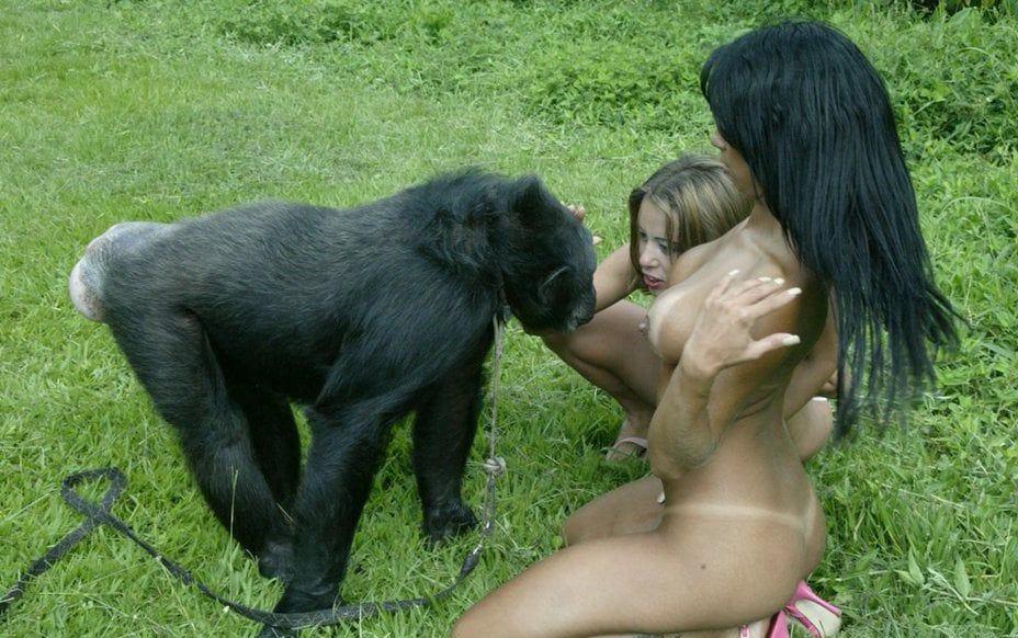 【画像あり】猿とSEX試みる女闇深すぎてワロタ。。。・7枚目