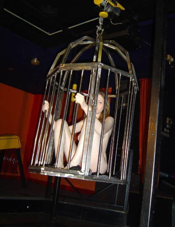 【悲報】鳥かごで飼育されてる女たちをご覧ください(32名)・15枚目